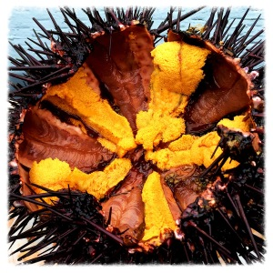 And that same live California sea urchin from above, cracked open and ready to eat.
