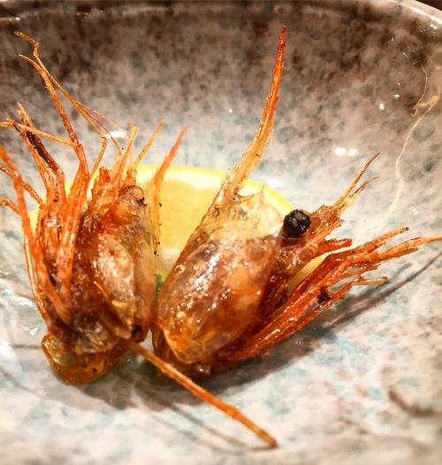 UniDiaries_Yasuda_ShrimpHead